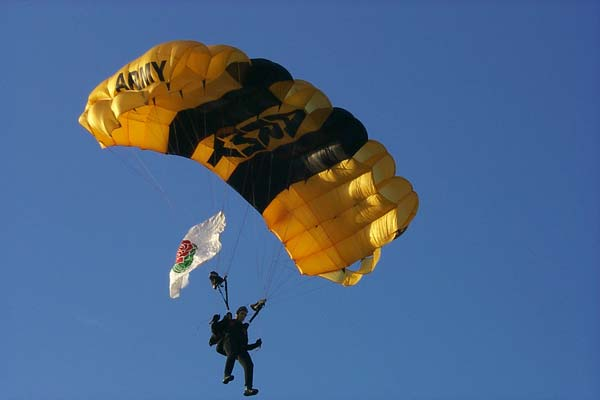 Army Sky Divers